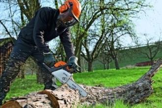 Мужчина из Камня-на-Оби погиб во время распиливания дров бензопилой