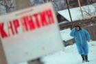 В Алтайском крае зафиксировали новый очаг бешенства